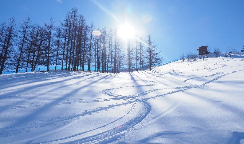 スキーで遊ぶ
